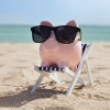 Photo of Piggy Bank at the beach on beach chair.